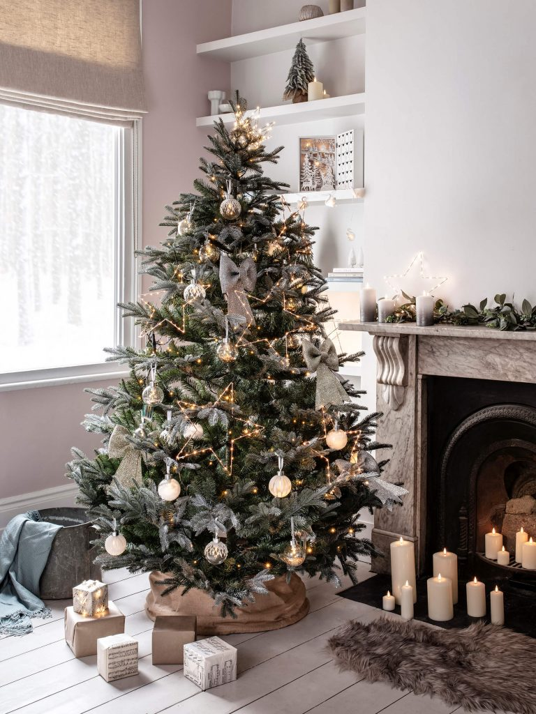 CHOOSING & CARING FOR YOUR CHRISTMAS TREE